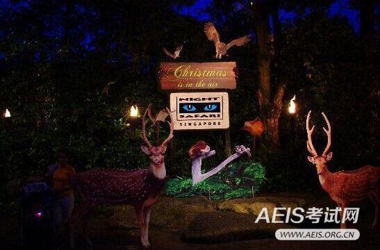 新加坡夜间野生动物园是全球首家在夜间开放的动物园,这里的动物表演
